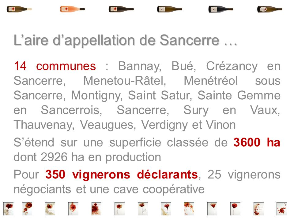 L'aire d'appellation de Sancerre …