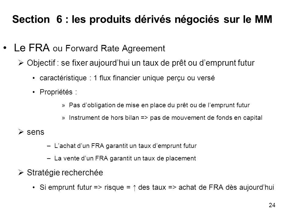 Section 6 : les produits dérivés négociés sur le MM