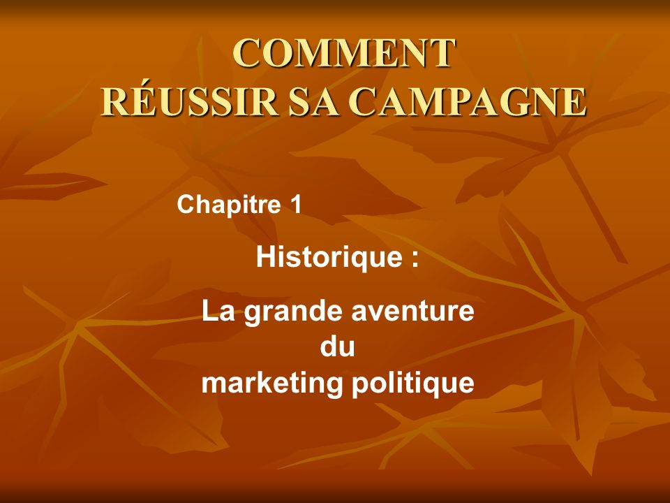 COMMENT RÉUSSIR SA CAMPAGNE La grande aventure du marketing politique