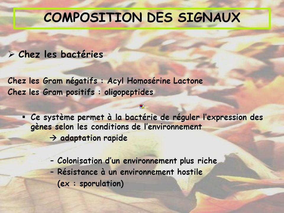 COMPOSITION DES SIGNAUX