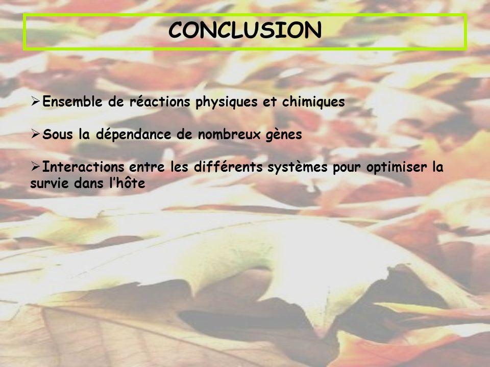 CONCLUSION Ensemble de réactions physiques et chimiques