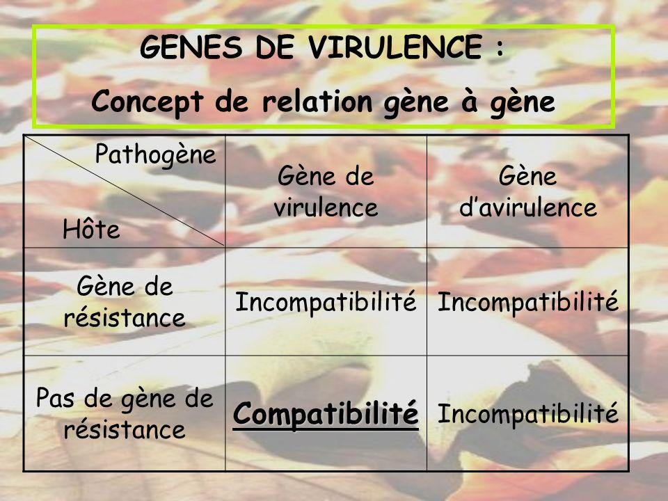 Concept de relation gène à gène