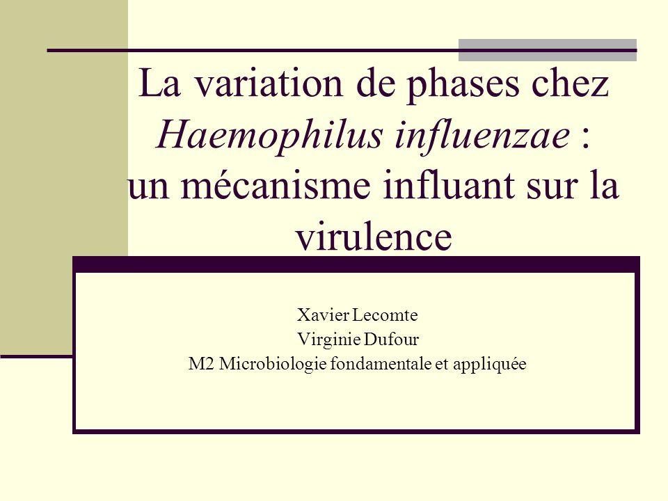 M2 Microbiologie fondamentale et appliquée