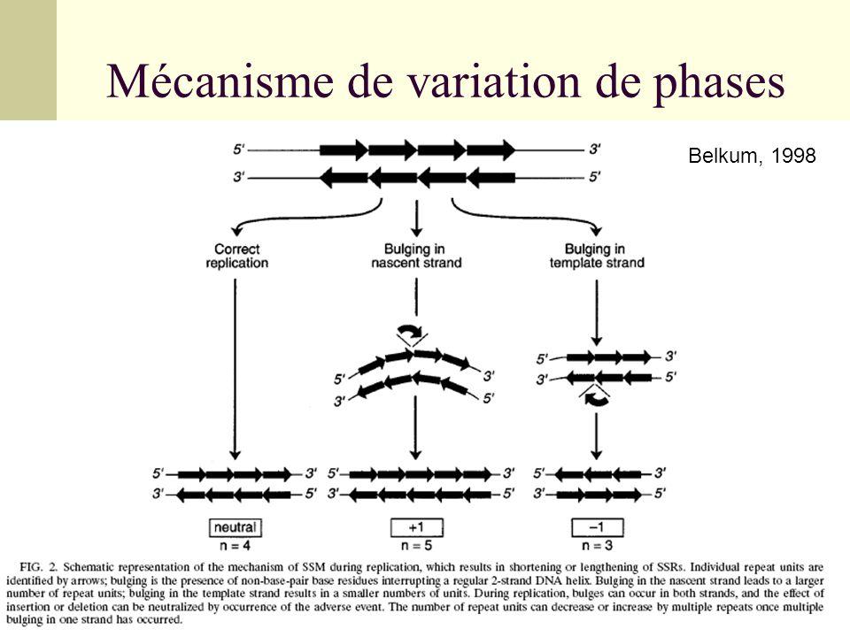 Mécanisme de variation de phases