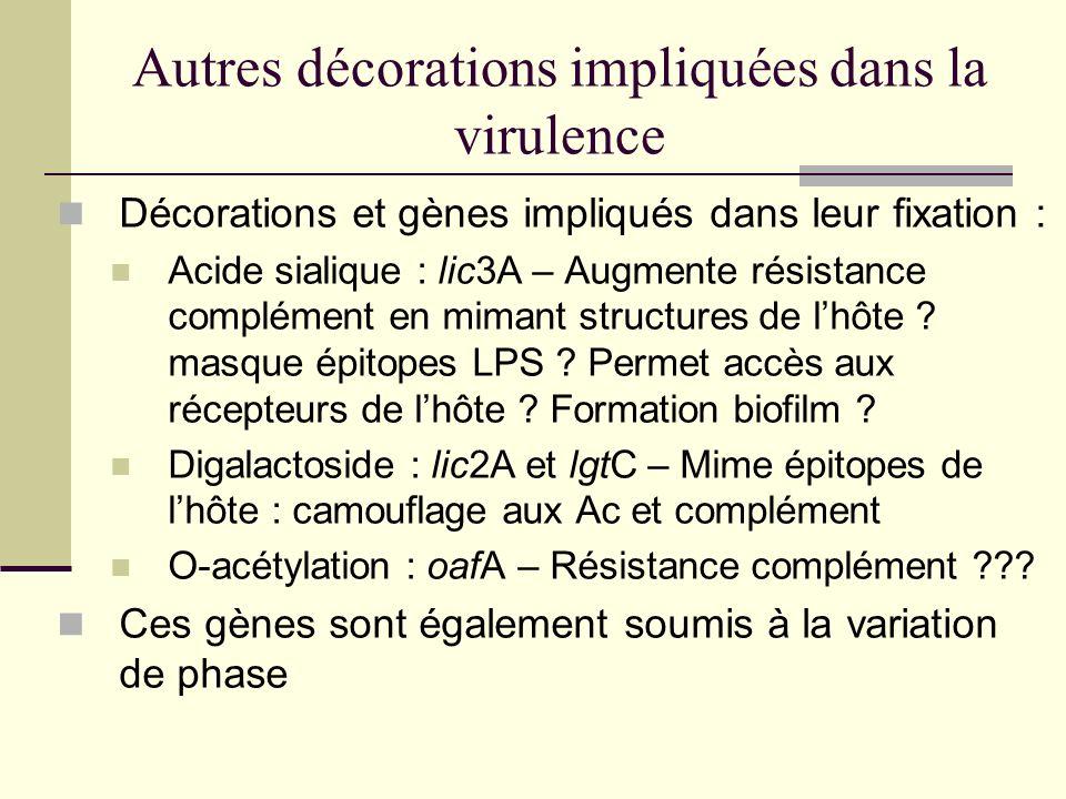 Autres décorations impliquées dans la virulence