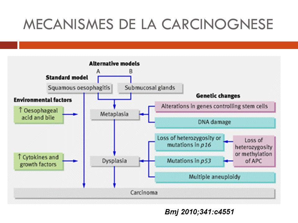 MECANISMES DE LA CARCINOGNESE