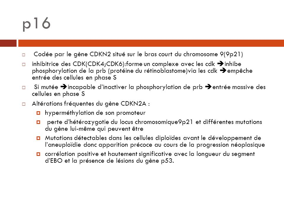 p16 Codée par le gène CDKN2 situé sur le bras court du chromosome 9(9p21)