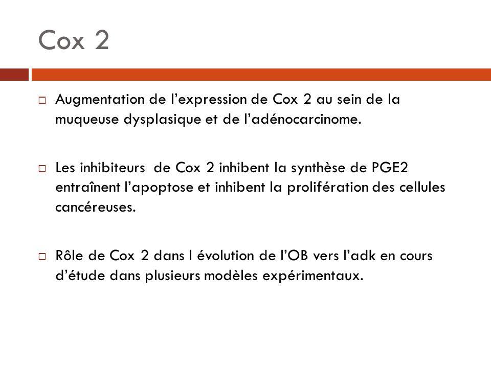 Cox 2 Augmentation de l'expression de Cox 2 au sein de la muqueuse dysplasique et de l'adénocarcinome.
