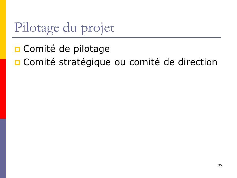 Pilotage du projet Comité de pilotage