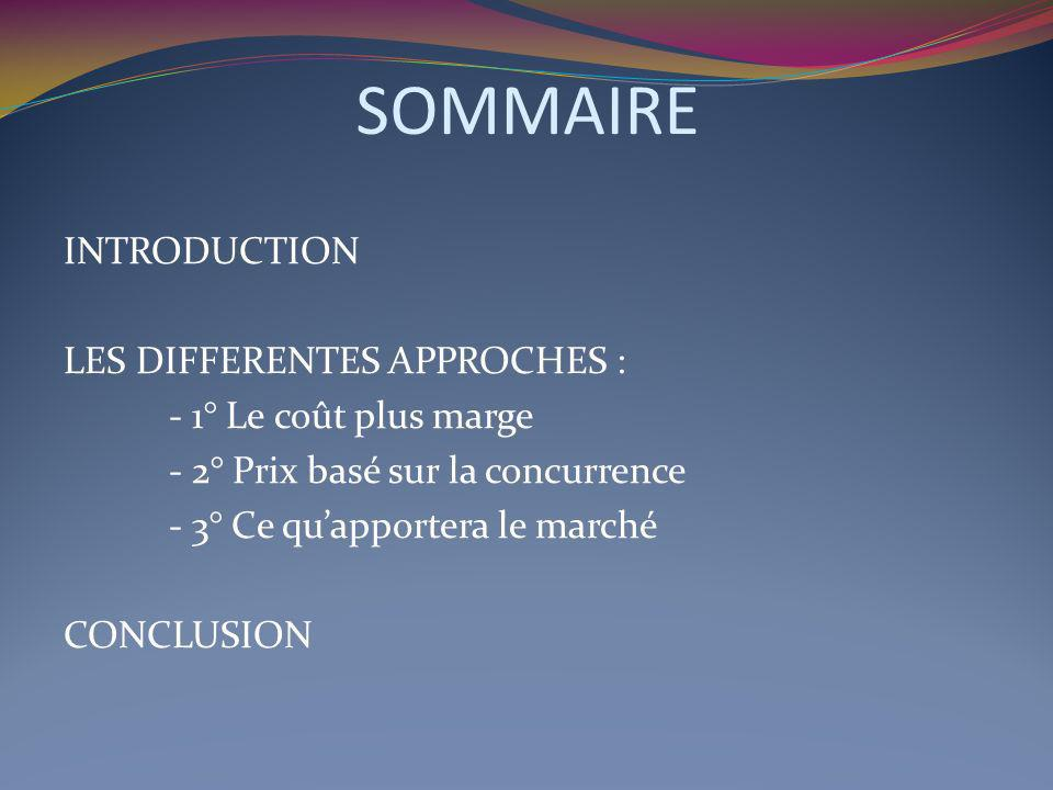 SOMMAIRE INTRODUCTION LES DIFFERENTES APPROCHES :
