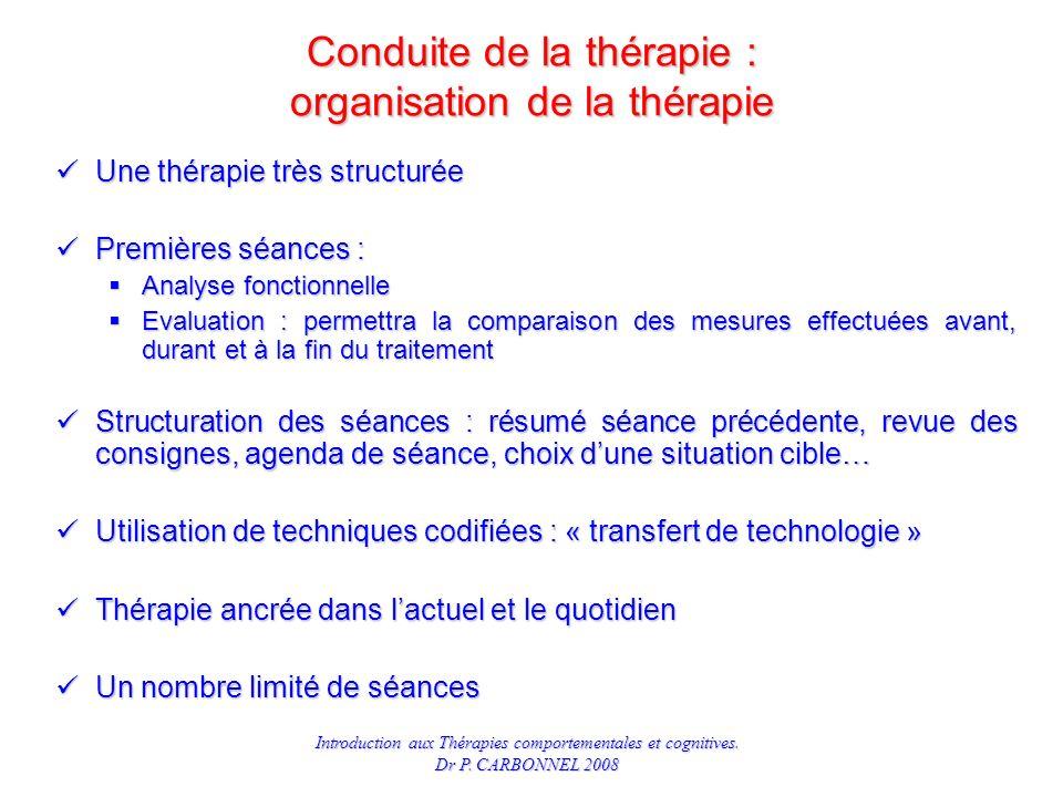Conduite de la thérapie : organisation de la thérapie