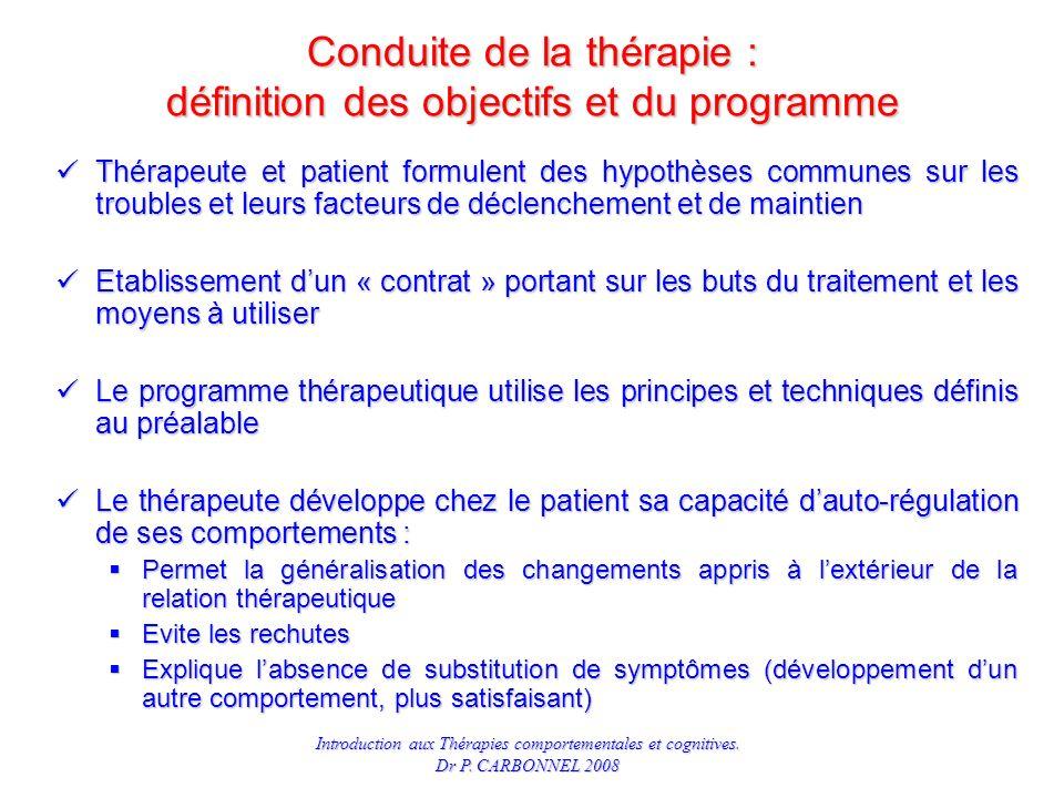 Conduite de la thérapie : définition des objectifs et du programme