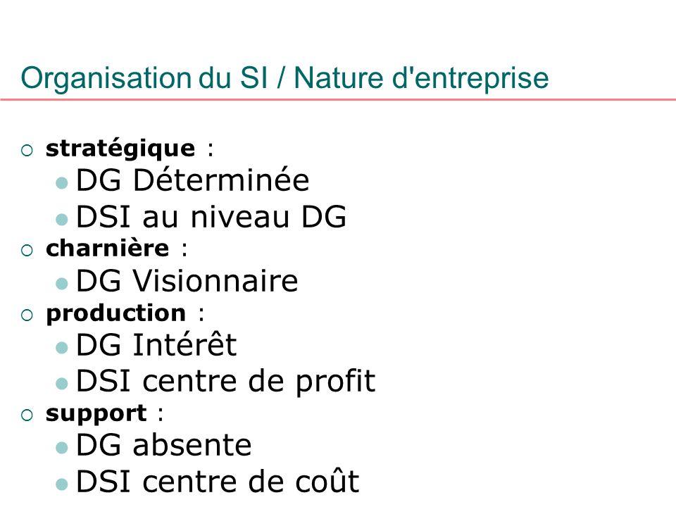 Organisation du SI / Nature d entreprise