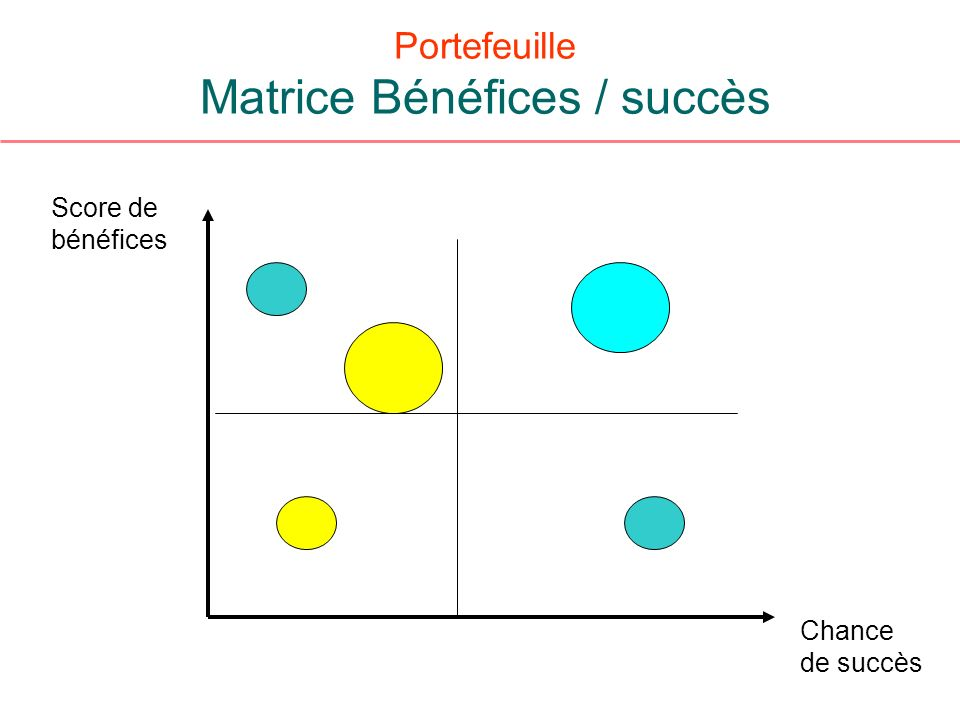 Portefeuille Matrice Bénéfices / succès