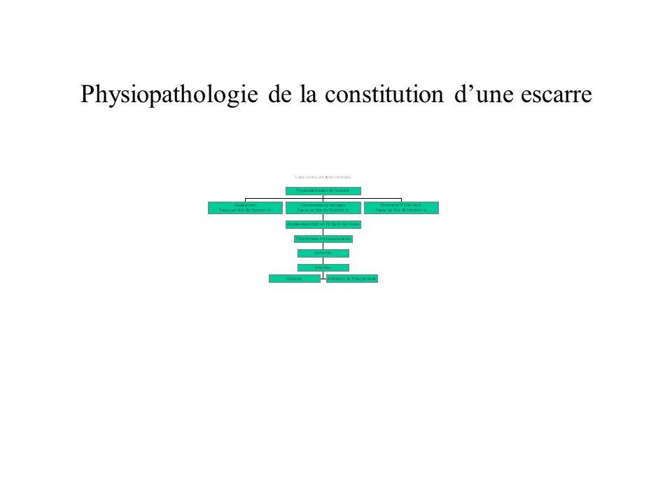 Physiopathologie de la constitution d'une escarre
