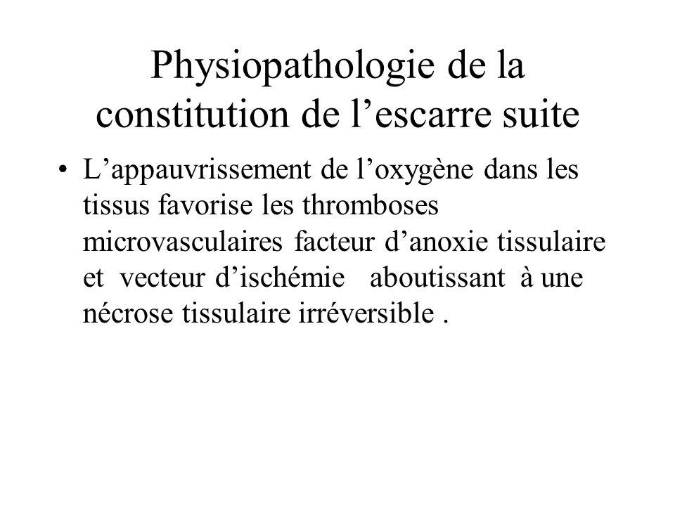 Physiopathologie de la constitution de l'escarre suite