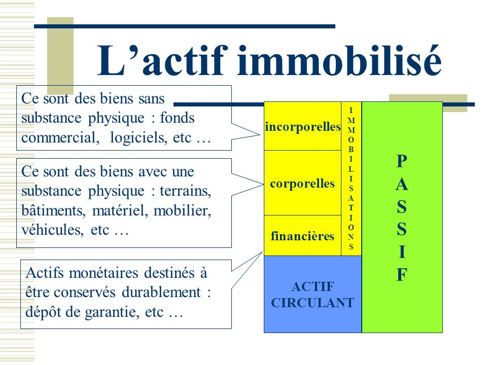 L'actif immobilisé P A S I F