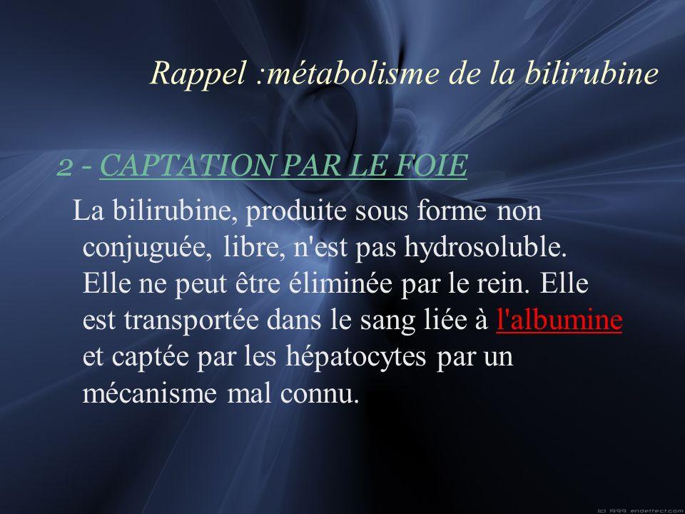 Rappel :métabolisme de la bilirubine