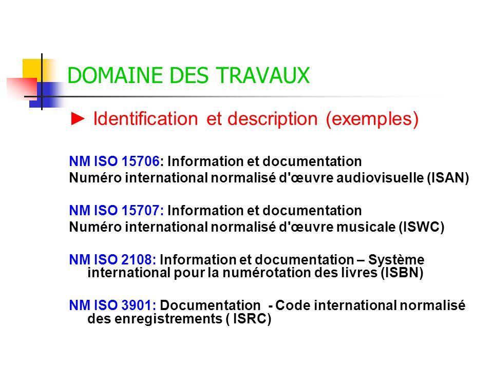 DOMAINE DES TRAVAUX ► Identification et description (exemples)
