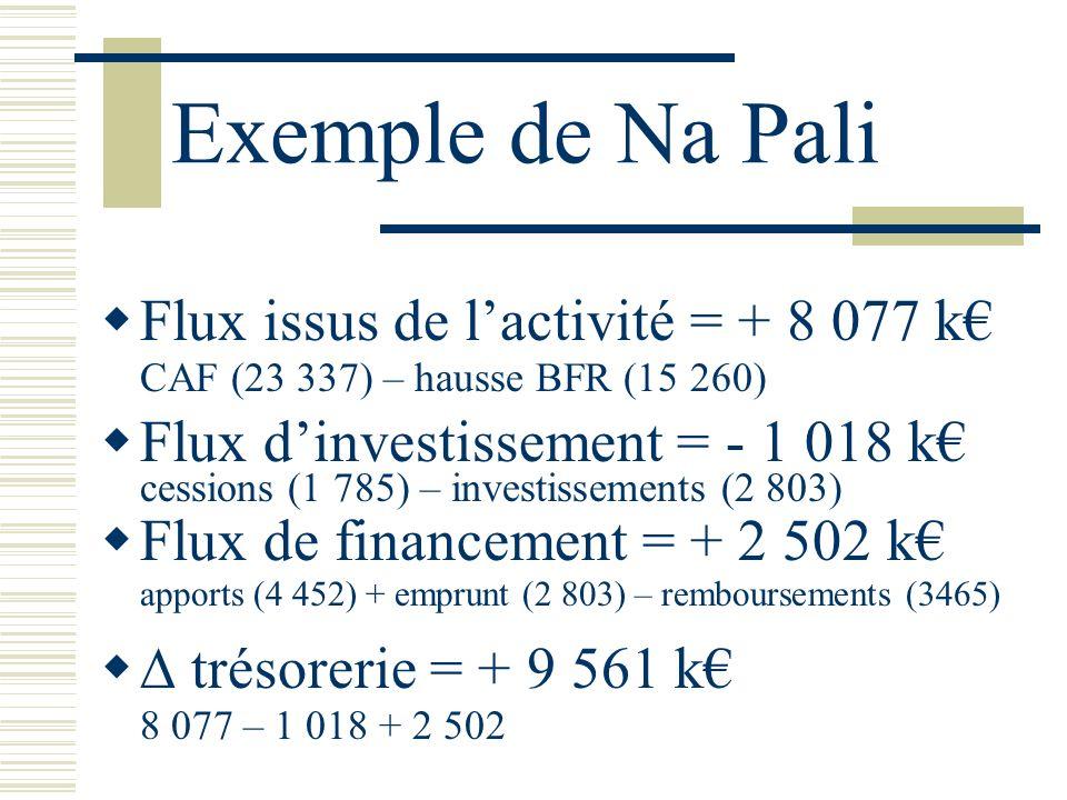 Exemple de Na Pali Flux issus de l'activité = + 8 077 k€