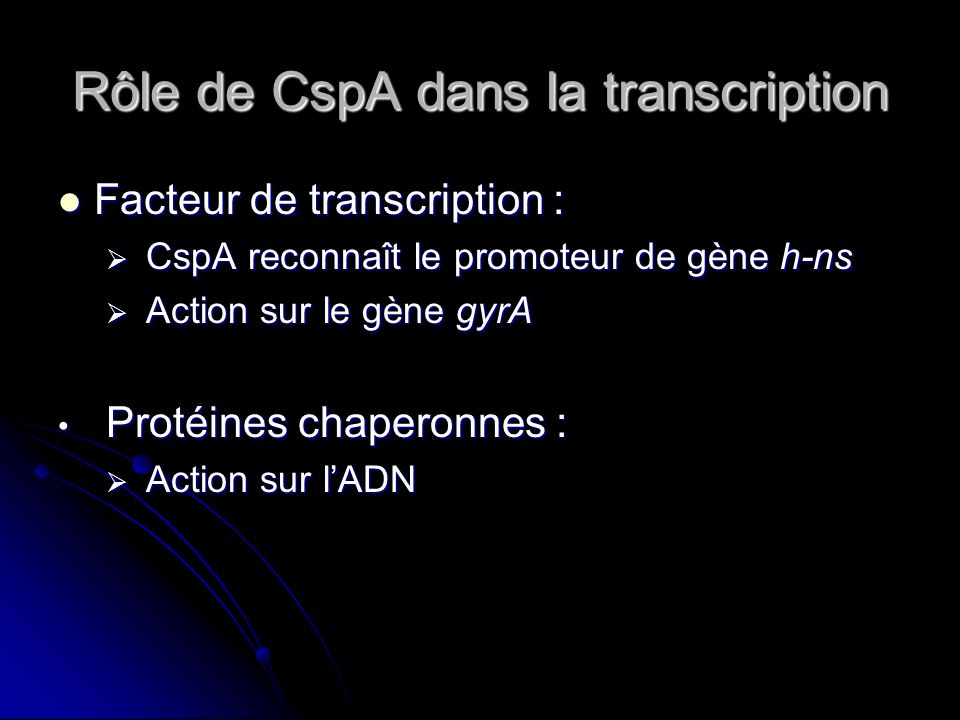 Rôle de CspA dans la transcription