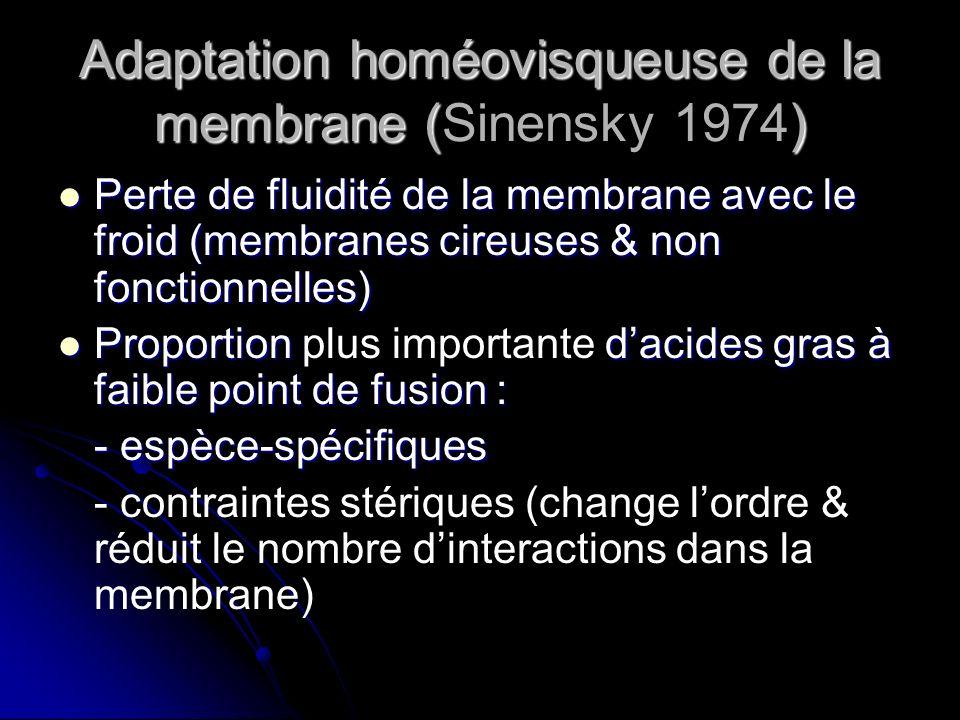 Adaptation homéovisqueuse de la membrane (Sinensky 1974)