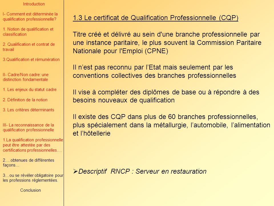 1.3 Le certificat de Qualification Professionnelle (CQP)