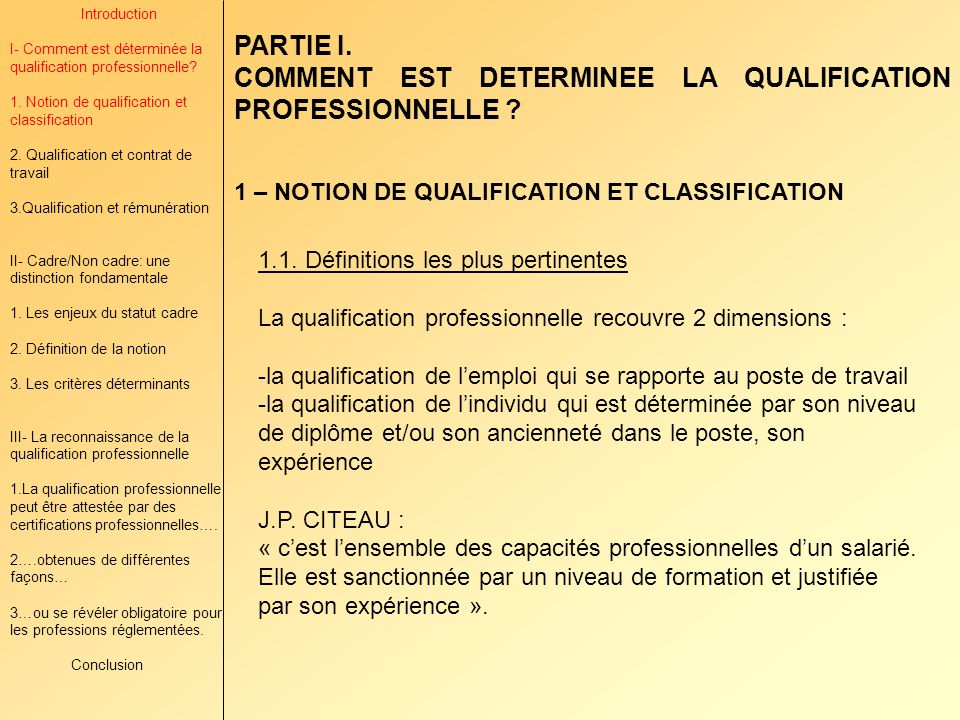 COMMENT EST DETERMINEE LA QUALIFICATION PROFESSIONNELLE