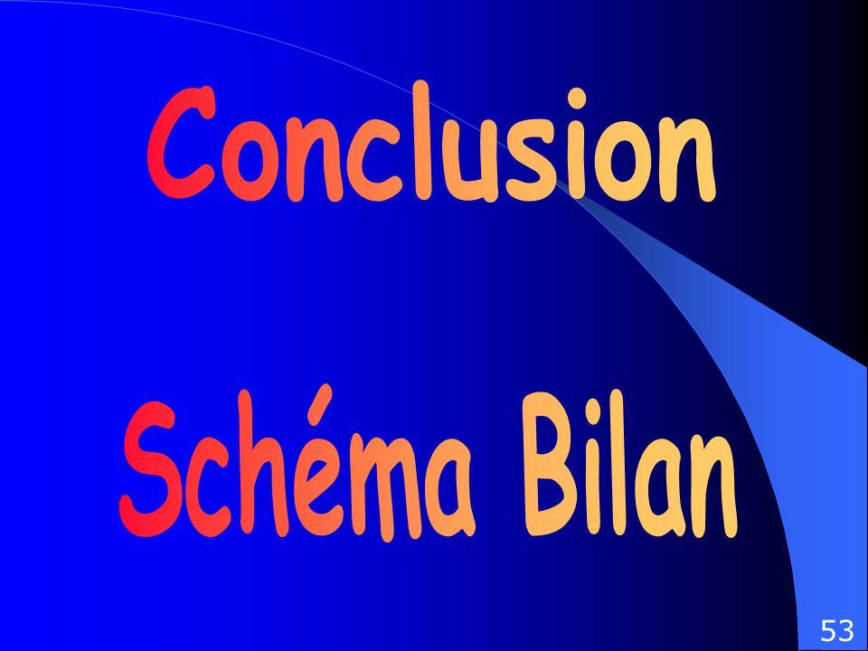 Conclusion Schéma Bilan