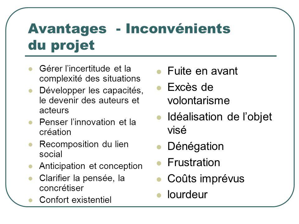 Avantages - Inconvénients du projet