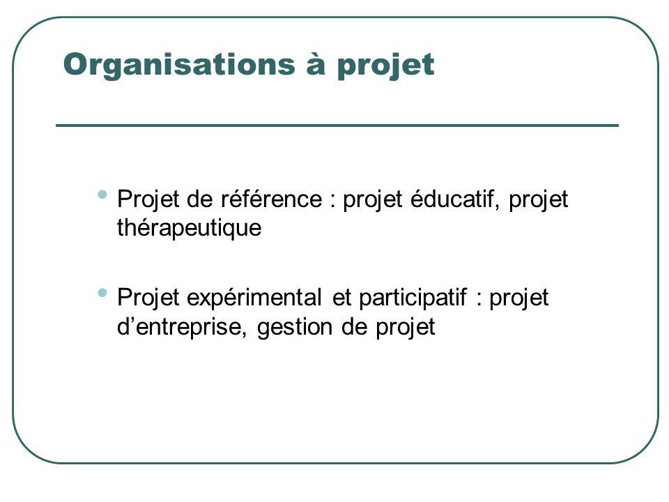 Organisations à projet