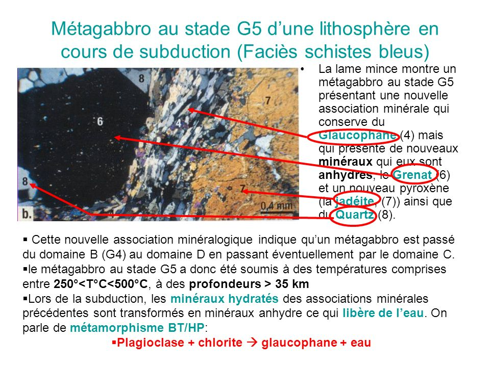 Plagioclase + chlorite  glaucophane + eau