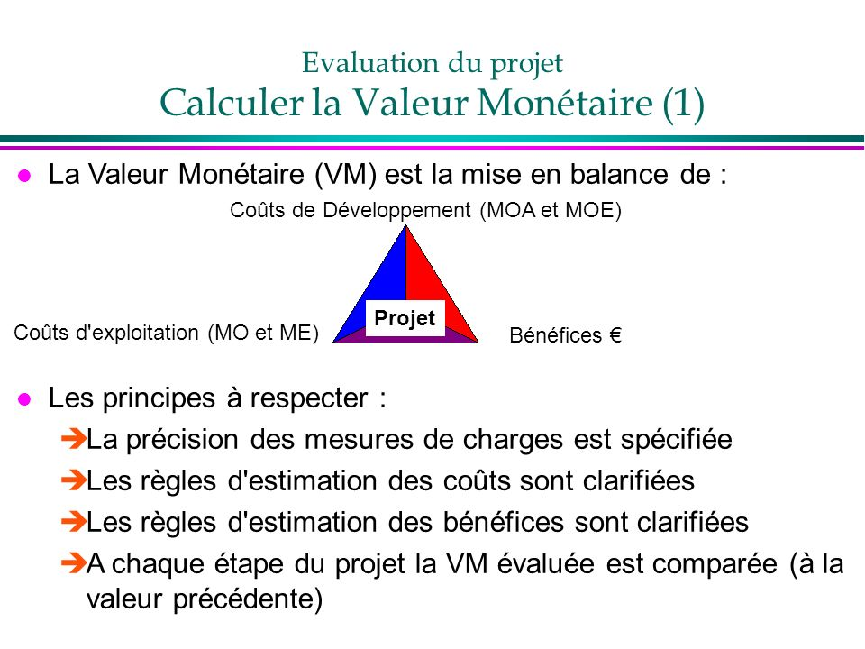 Evaluation du projet Calculer la Valeur Monétaire (1)