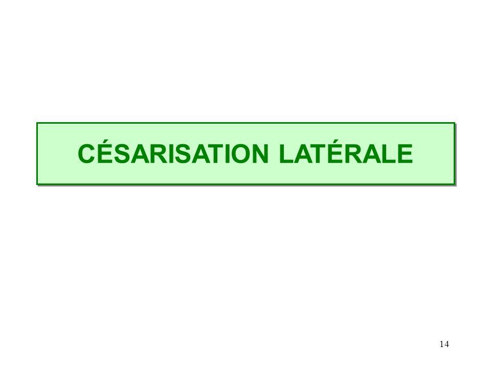 CÉSARISATION LATÉRALE