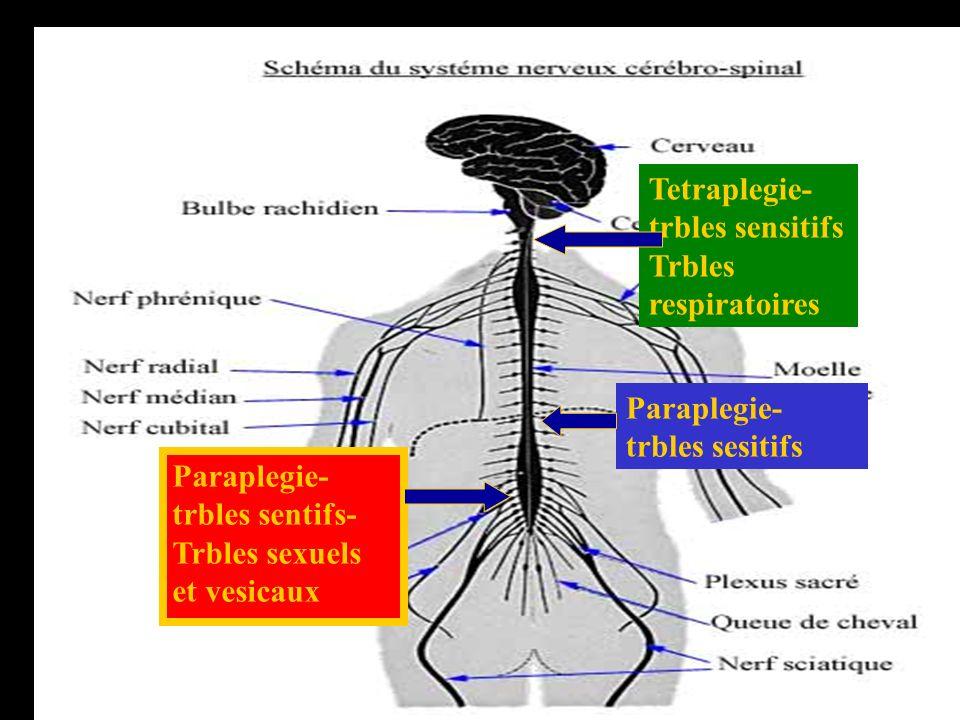 Tetraplegie-trbles sensitifs