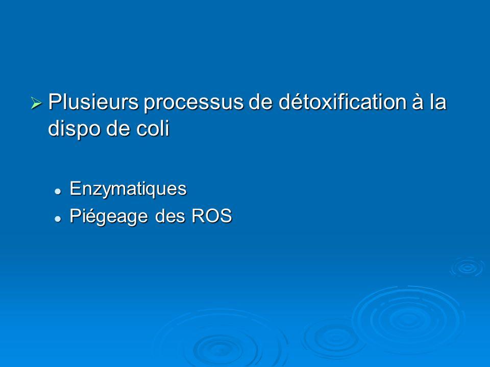 Plusieurs processus de détoxification à la dispo de coli