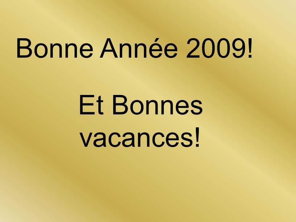 Bonne Année 2009! Et Bonnes vacances!