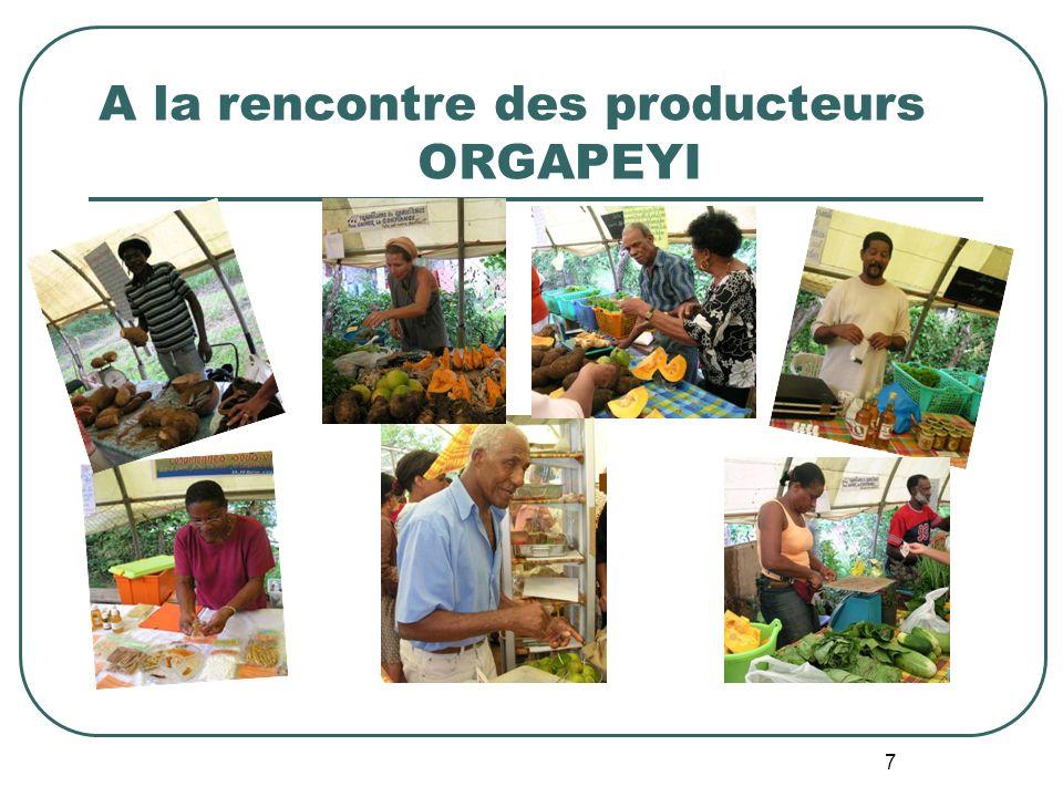 A la rencontre des producteurs ORGAPEYI