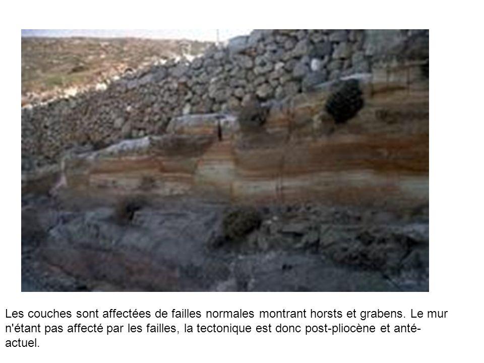 Les couches sont affectées de failles normales montrant horsts et grabens.