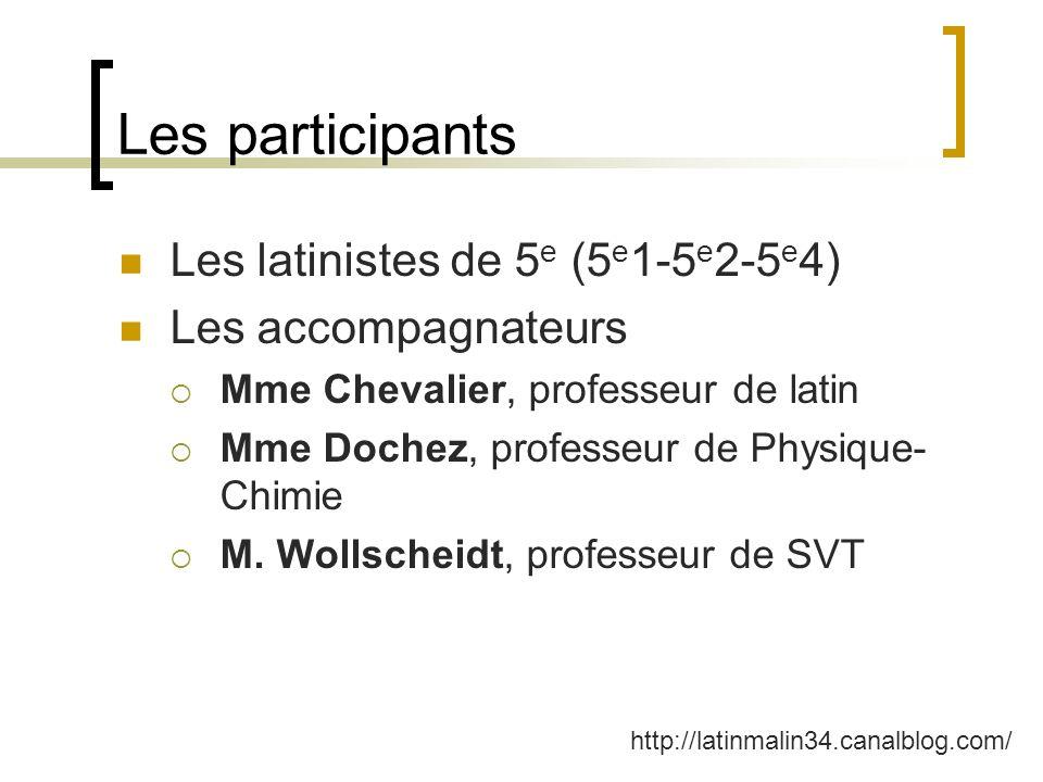 Les participants Les latinistes de 5e (5e1-5e2-5e4)