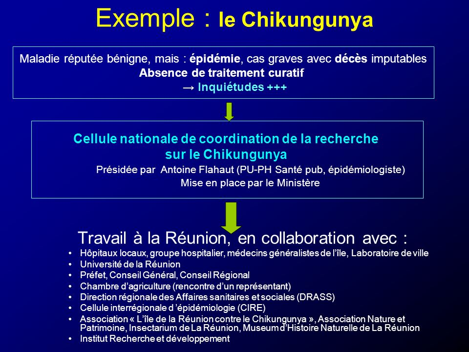 Exemple : le Chikungunya