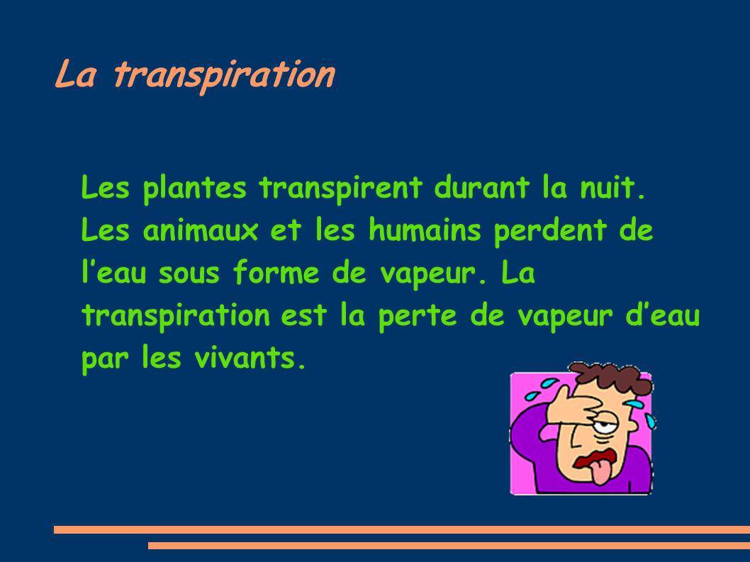 La transpiration