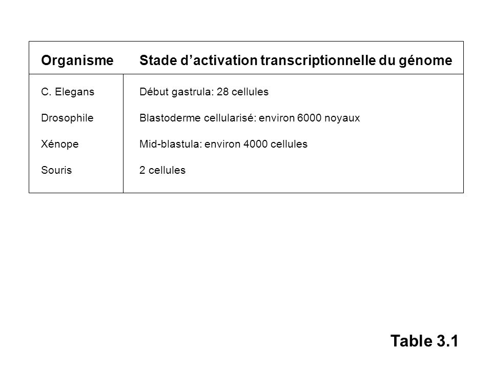 Table 3.1 Organisme Stade d'activation transcriptionnelle du génome