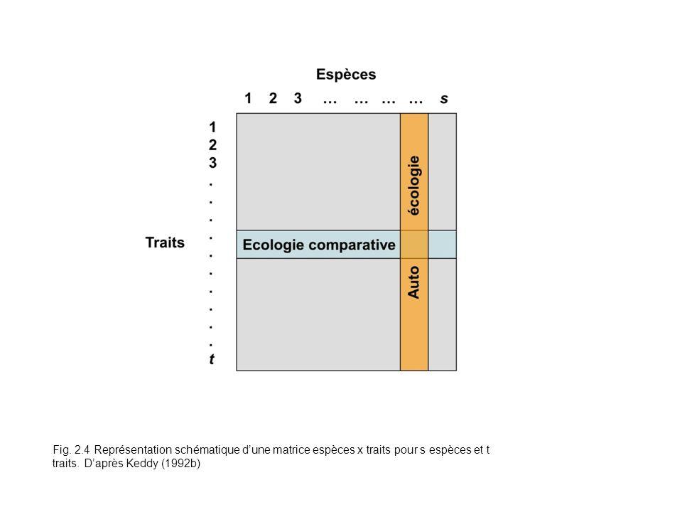 Fig. 2.4 Représentation schématique d'une matrice espèces x traits pour s espèces et t traits.