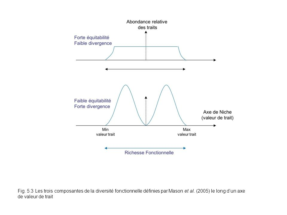 Fig.5.3Fig. 5.3 Les trois composantes de la diversité fonctionnelle définies par Mason et al.