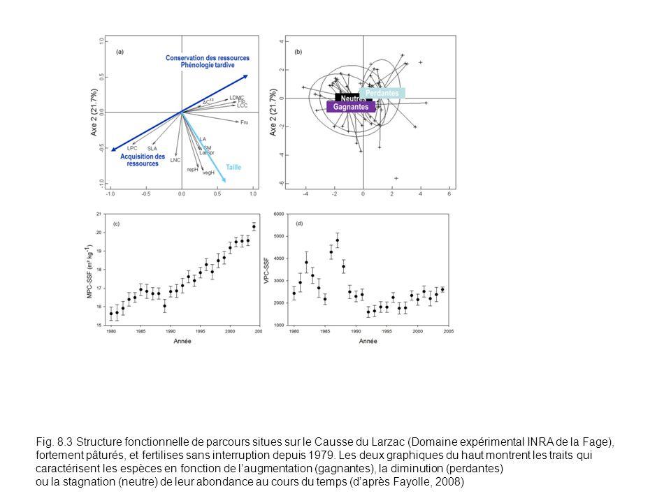 Fig. 8.3 Structure fonctionnelle de parcours situes sur le Causse du Larzac (Domaine expérimental INRA de la Fage), fortement pâturés, et fertilises sans interruption depuis 1979. Les deux graphiques du haut montrent les traits qui caractérisent les espèces en fonction de l'augmentation (gagnantes), la diminution (perdantes)