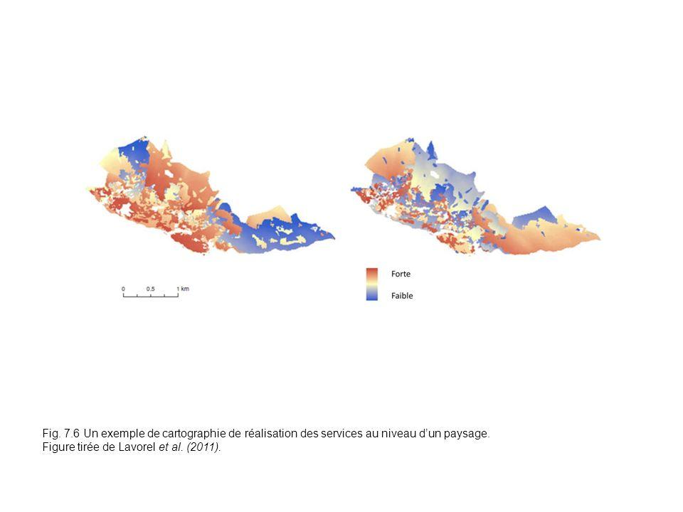Fig. 7.6 Fig. 7.6 Un exemple de cartographie de réalisation des services au niveau d'un paysage.