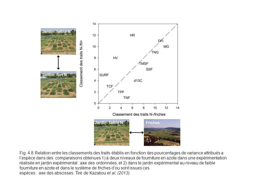 Fig. 4.8 Relation entre les classements des traits établis en fonction des pourcentages de variance attribués a l'espèce dans des comparaisons obtenues 1) à deux niveaux de fourniture en azote dans une expérimentation réalisée en jardin expérimental : axe des ordonnées, et 2) dans le jardin expérimental au niveau de faible fourniture en azote et dans le système de friches d'ou sont issues ces