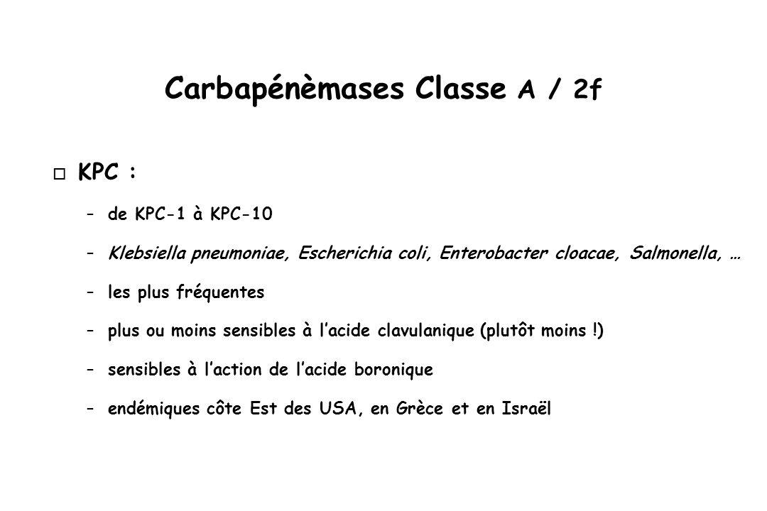 Carbapénèmases Classe A / 2f