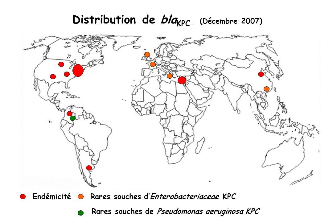 Distribution de blaKPC- (Décembre 2007)
